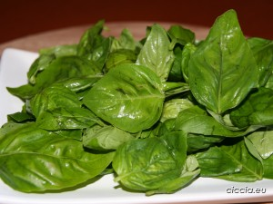 foglie-basilico-lavate